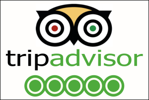 tripadvisor 5 star rating