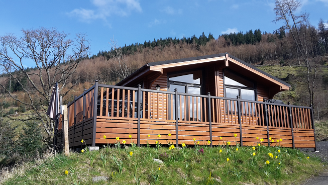 Happy New Year from Balquhidder Mhor Lodges!